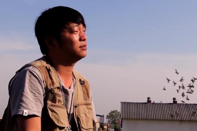 我是鸽手:石家庄翟国庆的养鸽故事