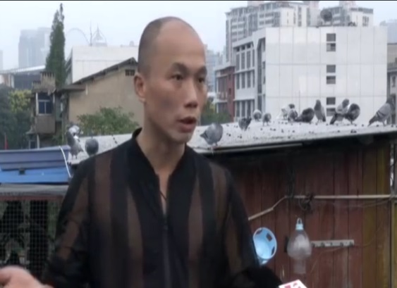 长沙王科:割舍不掉的养鸽梦想