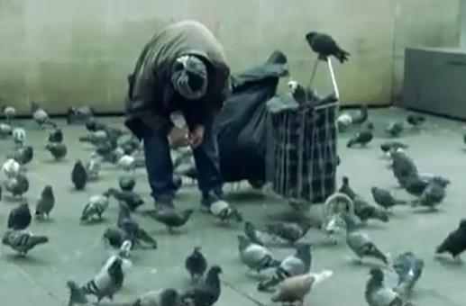 巴黎街头鸽人喂鸽九年 被赶出公寓