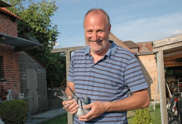 名鸽欣赏:比利时莱邦纳一岁鸽冠军