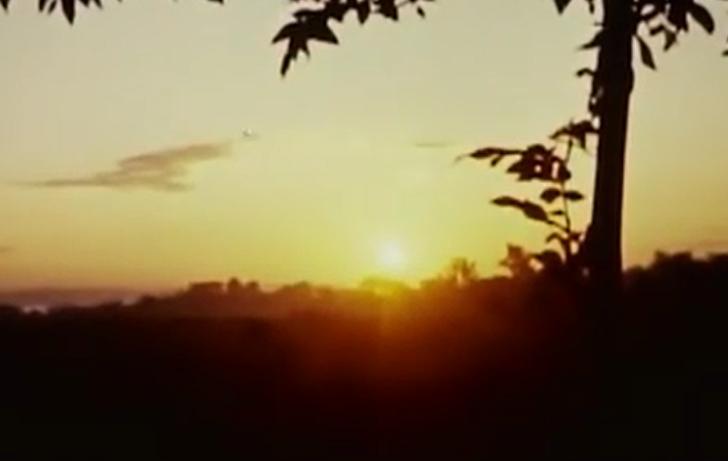 1963年纪录片:美国鸽友的一场信鸽比赛