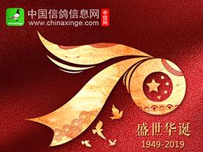 献礼共和国成立70周年:放飞和平鸽 共筑盛世梦