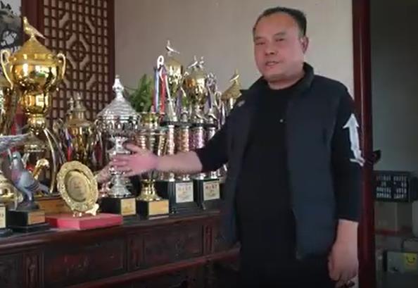 职业赛手北京金洲鸽业 开门红拿下4个冠军