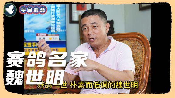 台湾名家魏世明 比赛鸽就得先比种鸽