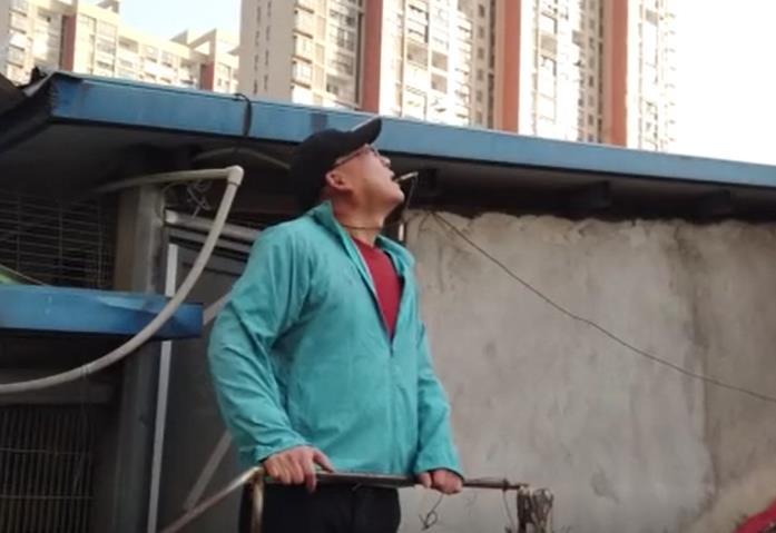 """武汉有位鸽痴会长 受伤醒来仍记挂""""鸽子还没喂"""""""